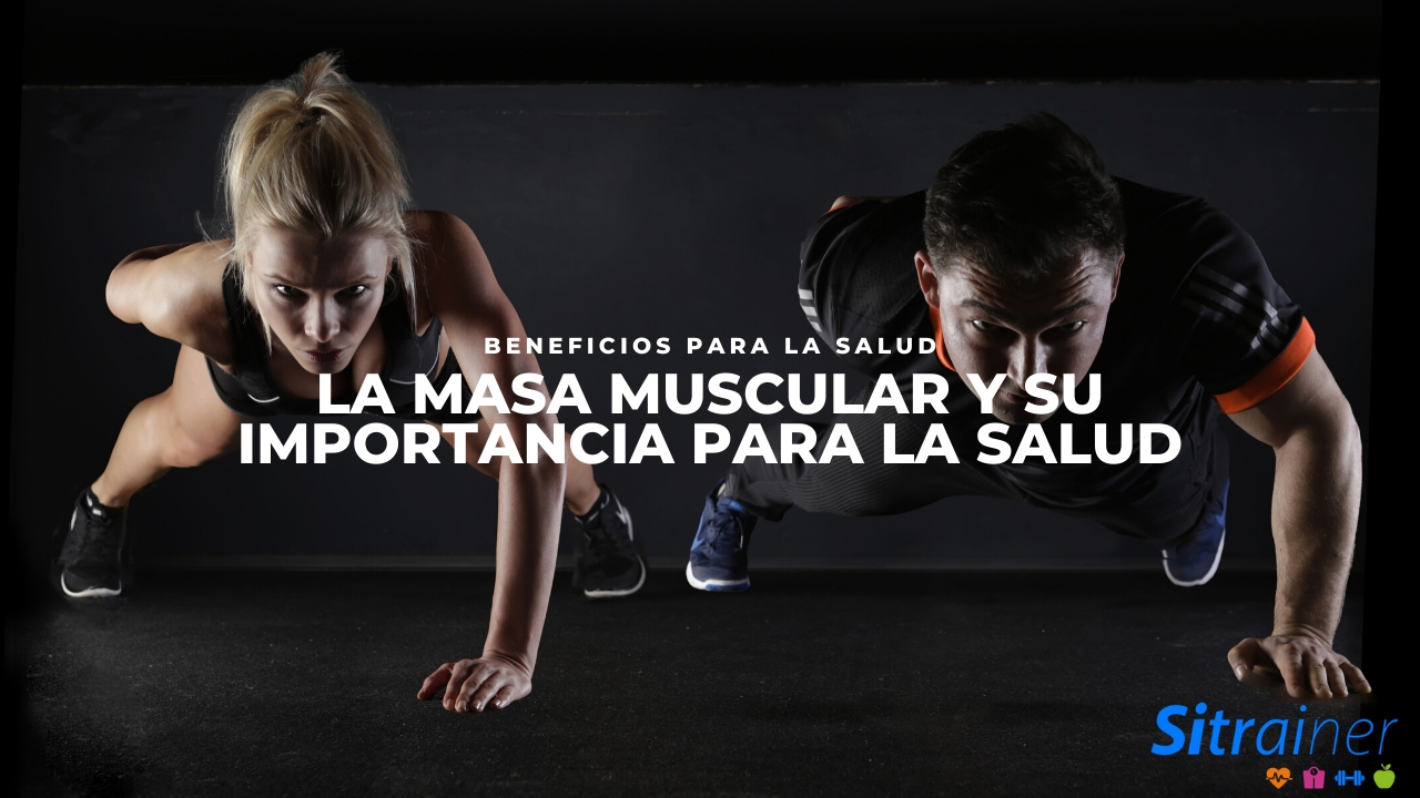 La masa muscular y su importancia para la salud
