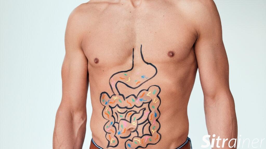 Cómo conocer el estado de tu equilibrio intestinal