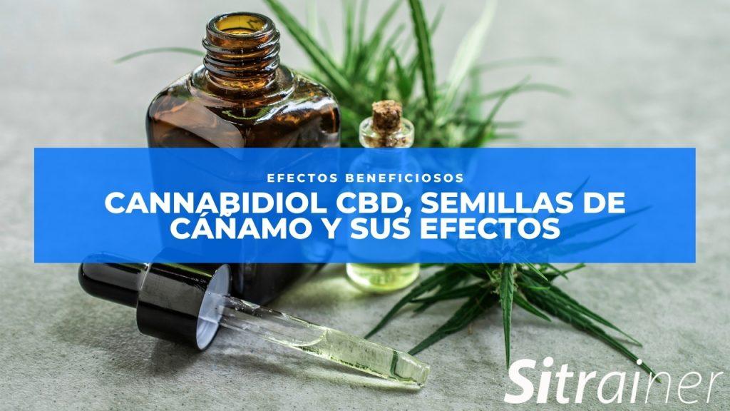 Cannabidiol CBD, semillas de cáñamo y sus efectos