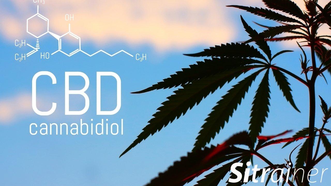 Es legal el Cannabidiol CBD en España