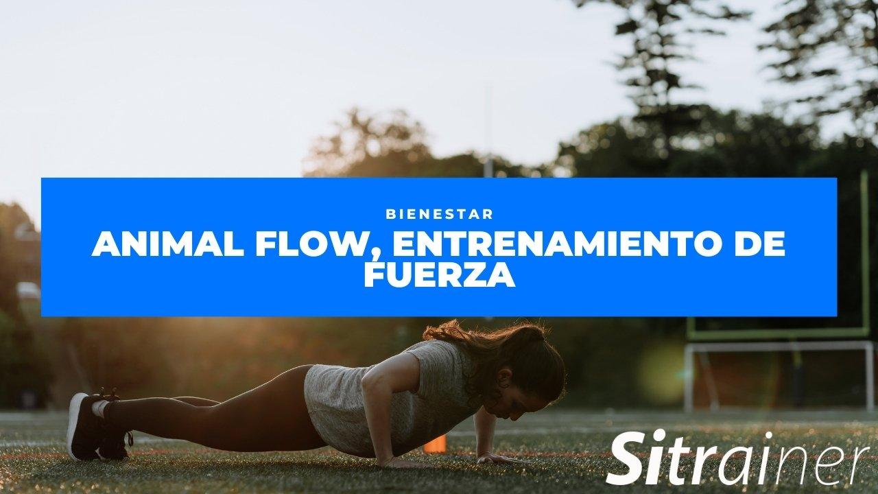 Animal flow, entrenamiento de fuerza