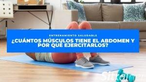 Cuántos músculos tiene el abdomen y por qué ejercitarlos